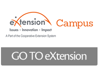 Link to eXtenstion
